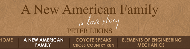 Talking Book - A New American Family, A Love Story by Peter Likins